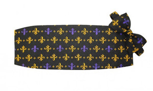 Mardi Gras Fluer De Lis Cummerbund and Bow Tie Set